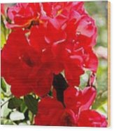 Beautiful Red Roses Wood Print