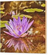 Beautiful Reflections Wood Print