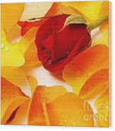 Beautiful Roses Valentine Wood Print by Boon Mee