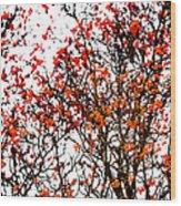 Beautiful Rowan 12 Wood Print