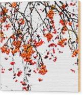 Beautiful Rowan 5 - Square Wood Print