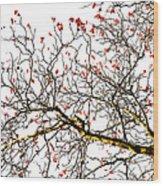 Beautiful Rowan 6 - Square Wood Print