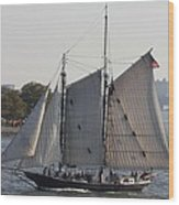 Beautiful Sailboat In Manhattan Harbor Wood Print