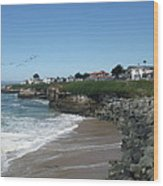 Beautiful Santa Cruz Coast Wood Print