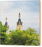 Beautiful Schwerin Castle Wood Print