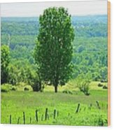 Beautiful Pennsylvania Summer Scene - Colorful Landscape - Painting Like Wood Print