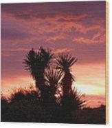 Beautiful Sunset In Arizona Wood Print