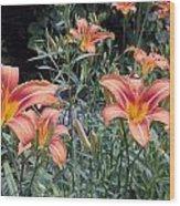 Beautiful Tiger Lilies Wood Print