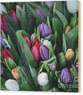 Beautiful Tulips Bouquet Wood Print
