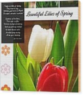 Beautiful Tulips Series 2 Wood Print
