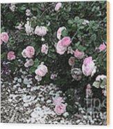 Beautiful Until The Last Petal Falls Wood Print