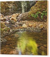 Beautiful View Of Upper Falls Located In Uvas Canyon County Park Forest Reflection Wood Print