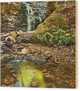 Beautiful View Of Upper Falls Located In Uvas Canyon County Park. Wood Print