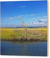 Beautiful View Topsail Island Wood Print