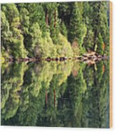 Beautiful Water Wood Print