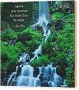 Beautiful Waterfalls Through A Walk With Nature Wood Print