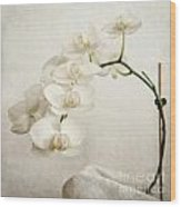 Beautiful White Orchid II Wood Print by Hannes Cmarits