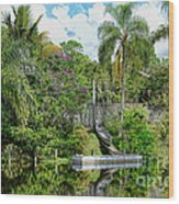 Beautiful Winter Day In Florida  Wood Print