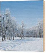 Beautiful Winter Landscape Wood Print