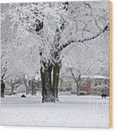 Beautiful Winter Park Wood Print
