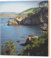Beautifully Rugged Shoreline At Point Lobos Two Wood Print