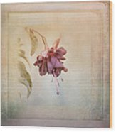 Beauty Fades Softly Framed Wood Print