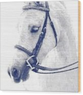 Beauty In A Bridle Wood Print