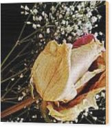 Beauty In Baby's Breath Wood Print by Tanya Jacobson-Smith