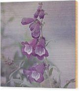 Beauty In Purple Wood Print