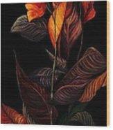 Beauty In The Dark Wood Print