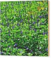 Beauty In The Meadow Wood Print