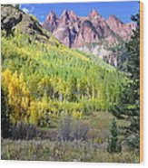 Beauty In The Mountains Wood Print