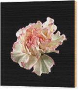 Beauty Wood Print by Liz  Alderdice