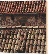 Beauty Of Dubrovnik 3 Wood Print