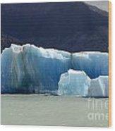 Beauty Of Icebergs Patagonia 6 Wood Print