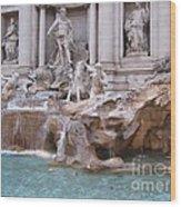 Beauty Of Rome Wood Print