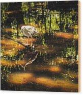 Beauty Of The Bog Wood Print by Karen Wiles