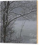 Beauty Of Winter  Wood Print