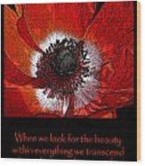 Beauty Red Anenome Wood Print
