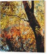 Beauty Reflected Wood Print