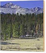 Beaver Meadows Wood Print by Tom Wilbert