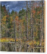 Beaver Pond Reflections Along The Highland Scenic Highway Wood Print