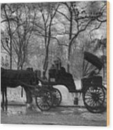 Beckoning Carriage Wood Print