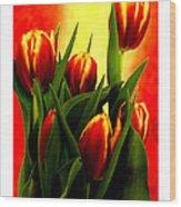 Becky Tulips Art2 Jgibney The Museum Gifts Wood Print