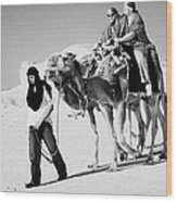 bedouin guide in modern clothing leads british tourists riding camels and wearing desert clothes into the sahara desert at Douz Tunisia Wood Print