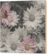 Bee And Daisies In Partial Color Wood Print
