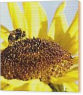 Bee And Flower Wood Print by Les Cunliffe