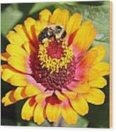 Bee Bright Wood Print