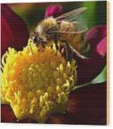 Bee Business Wood Print