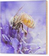 Bee Dream Wood Print